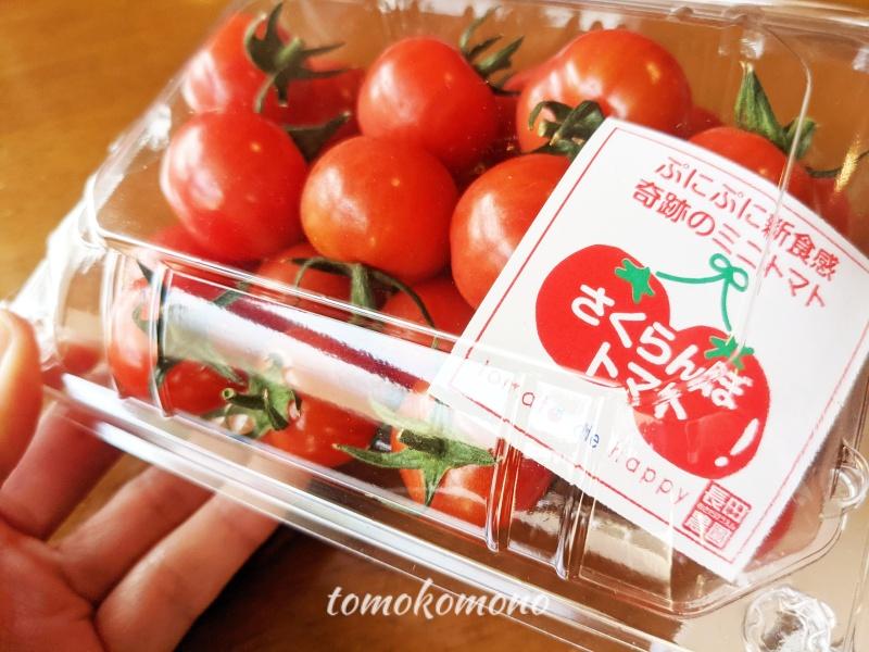 さくらんぼトマト ふるさと納税